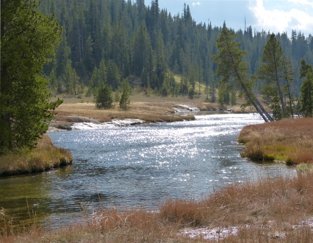 Firehole River by Lone Star Geyser